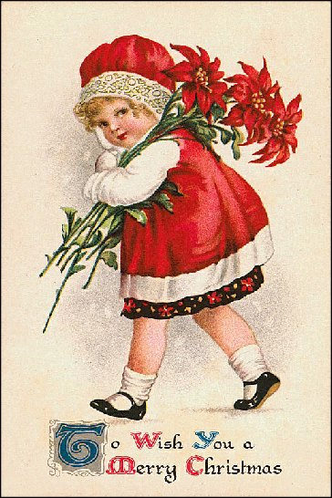 little girl with red poinsettia 002